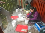 Maurine and Bennett processing samples