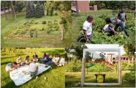 scenes from the UST Stewardship Garden